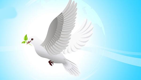 TOPLUMSAL BARIŞ GELMESİ BEKLENEN DEĞİL İNŞA EDİLEN BİR SÜREÇTİR!