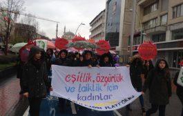 Bolu'da 8 Mart Yürüyüşü