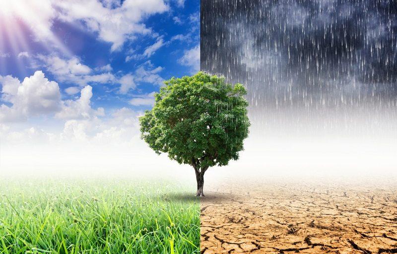 İklim Krizine Karşı 20 Eylül'de Eylemdeyiz: İnsanlar ve Gezegenimiz Kârdan Önce Gelir!