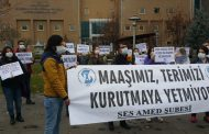 Amed Şubemiz: Maaşımız Terimizi Kurutmaya Yetmiyor!