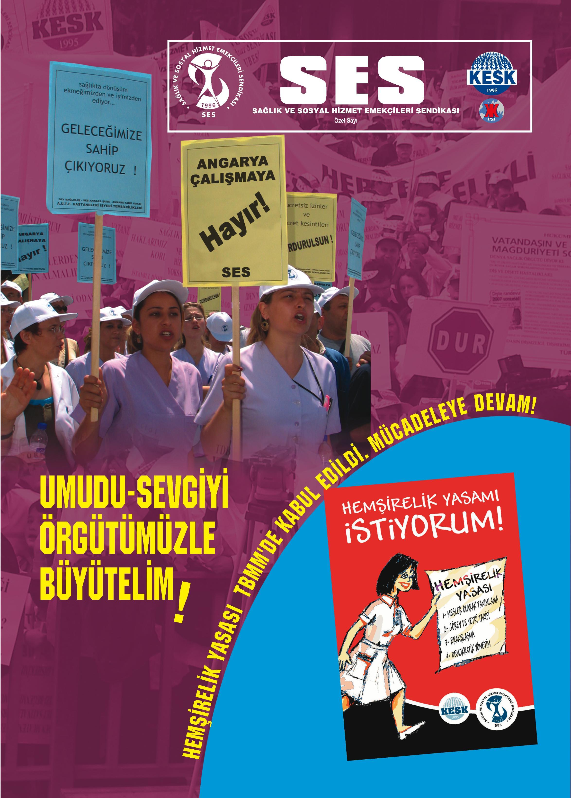 hemsire2008